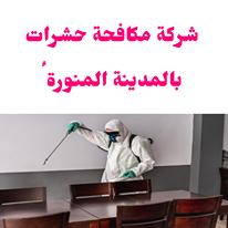 شركة مكافحة حشرات بالمدينة المنورة،مكافحة حشرات بالمدينة المنورة،رش حشرات بالمدينة المنورة
